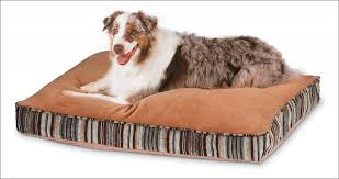 Kong Chew Resistant Dog Bed by Interiors Magnificent Ninja Dog Bed Xl Durable Crate Pad Dog