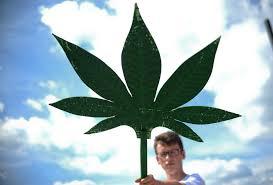 cannabis auf rezept kiffen als kassenleistung wer bekommt