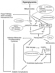 New Insights on Oxidative Stress and Diabetic plications May