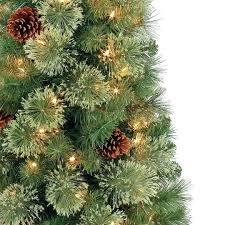 Cashmere Sonoma Christmas Tree Hobby Lobby 4 Lit Lime Green Pine Artificial Lights Pencil Splendid Design Sheltons