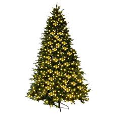 Outdoor Lighted Christmas Trees Ideas Meaningful Use Home Designs