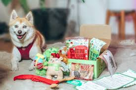 $10 Off BarkBox Coupon & 2019 Exclusive Review Bark Box Coupons Arc Village Thrift Store Barkbox Ebarkshop Groupon 2014 Related Keywords Suggestions The Newly Leaked Secrets To Coupon Uncovered Barkbox That Touch Of Pit Shop Big Dees Tack Coupon Codes Coupons Mma Warehouse Barkbox Promo Codes Podcast 1 Online Sales For November 2019 Supersized 90s Throwback Electronic Dog Toy Bundle Cyber Monday Deal First Box For 5 Msa