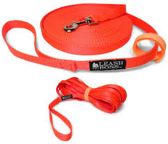 Amazon.com : Leashboss Long Trainer - 50 Foot 3/4 Inch Lead ... Do Female Dogs Get Periods How Often And Long Does The Period Dsc3763jpg The Best Retractable Dog Leash In 2017 Top 5 Leashes Compared Please Fence Me In Westward Ho To Seattle Traing Talk Teaching Your Come When Called Steemit For Outside December Pet Collars Chains At Ace Hdware Biglarge Reviews Buyers Guide Amazoncom 10 Foot With Padded Handle For Itt A Long Term Version Of I Found A Rabbit Wat Do