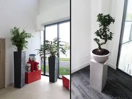 au bureau fleury merogis aménagement végétal d un showroom et bureau à fleury mérogis