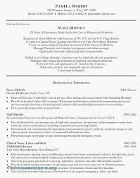 Experienced Nursing Resume Examples Best Of Formats For Resumes Fresh Sample 0d Job