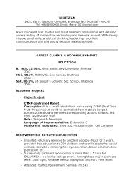 Information Technology Resume Sample Super Template Examples Pdf