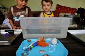 Materials Sink Or Float by Float Or Sink Preschool Activity Mamaguru