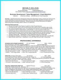 Business Plan For Sales Interview Job Sample Territory Manager Development Nice