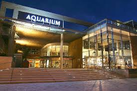 aquarium la rochelle all you need to before you go with