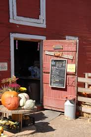Boulder Pumpkin Patch 2015 by Berry Patch Farms Pick Your Own And Country Harvest Festival