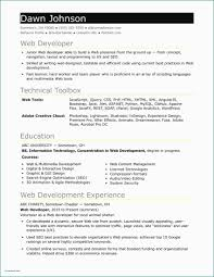Gallery Of Sample Resume Director Information Technology Template Word