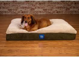 cave dog beds large serta dog bed bolster noten animals denim dog