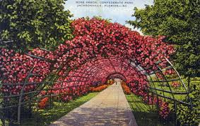 Florida Memory Rose arbor Confederate Park Jacksonville Florida