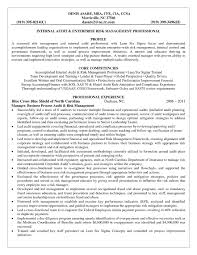 Operational Risk Manager Resume Best Of Credit