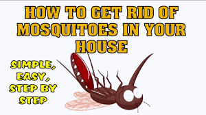 How To Get Rid Of Mosquitoes In Your House - YouTube How To Remove Mosquitoes From Your Backyard Youtube 25 Unique Mosquito Spray Ideas On Pinterest Natural Mosquito Keep Mosquitoes Out Of Your Yard For A Month And Longer With Ways Repel Accidentally Green To Get Rid Of Bugs In Backyard Enjoy Bbq Picture With Gnats In The House Kitchen Plants Organically 9 Steps Pictures Best Sprays Insect Cop 27 Banish From Next Barbecue Roaches Fleas Ants Repelling Plants Plant Citronella Lemongrass