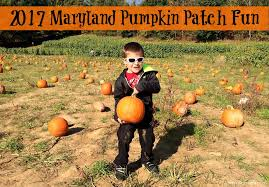 Pumpkin Farms In Southern Maryland by 2017 Maryland Pumpkin Patch Fun Maryland Momma U0027s Rambles