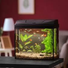 aquarium test bzw vergleich 2021 computer bild
