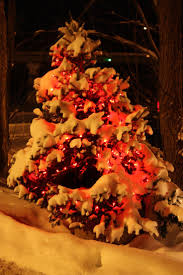 Christmas Tree Shop Shrewsbury Ma by 40 Best Winter In Maine Images On Pinterest Maine Google Images