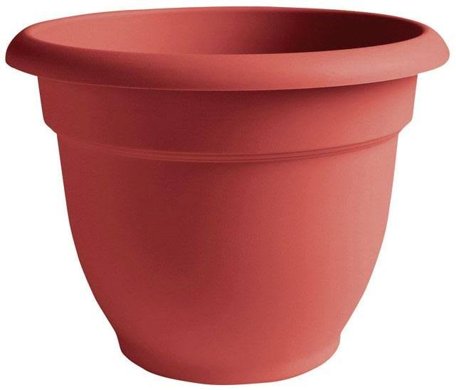 Bloem Ariana Self Watering Planter - Union Red, 6""