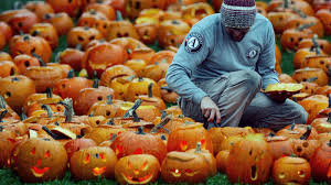 Nh Pumpkin Festival Riot by White People And Pumpkins A History