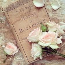 Pin By Ewa Kubiczek On Books
