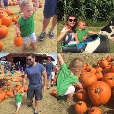 Pumpkin Patch Ct by And Then There Were Three November 2016