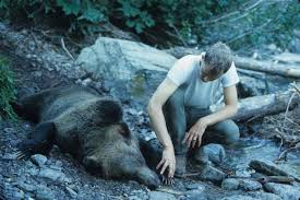 Northland Sheds Milbank Sd by The True Story Of 2 Fatal Grizzly Bear Attacks That Changed Our