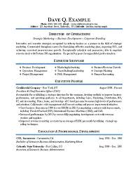 Sample Resume For Director Of Operations Example Infinite Imagine