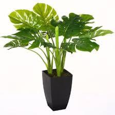 le bureau verte la plante artificielle pour le bureau ou la maison