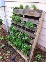 Diy Vertical Pallet Vegetable Garden