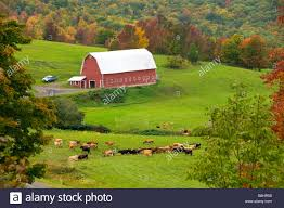 A Red Barn On Small Dairy Farm In The Catskills Of New York State ... Dairy Barns Hotelroomsearchnet Live In A Converted Barn Vienna For 979000 Curbed Dc Curtains Seneca Systems Selden 2010sven Vik Centereach Long Island Ny Palomba Academy Of Music Store Gunhill Bronx New York C Flickr Stores Hicksville Rd Union Ave Bethpage Around Song Prettiest Click Title To Read Post Part Time Man Of Rock Farm A Red Dairy Barn With White Fence Middlebury Indiana Usa Ackerhurst Wikipedia The Free Encyclopedia Announcing 2012 Small Field Days Cornell Farms Program