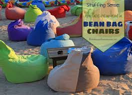 Stuffing Sense: Why There Are No Beans In Bean Bag Chairs Nobildonna Stuffed Storage Birds Nest Bean Bag Chair For Kids And Adults Extra Large Beanbag Cover Animal Or Memory Foam Soft 7 Best Chairs Other Sweet Seats To Sit Back In Ehonestbuy Bags Microfiber Cotton Toy Organizer Bedroom Solution Plush How Make A Using Animals Hgtv Edwards Velvet Pouch Soothing Company Empty Kid Covers Your Childs Blankets Unicorn Stop Tripping 12 In 2019 10 Of Versatile Seating Arrangement