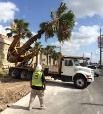 Summer Time Shade – Naturally Cool - Valley Business Report Rollover Crash In Harlingen Under Invesgation Border Truck Sales Enero 2016 Youtube Myth And Reason On The Mexican Travel Smithsonian Used Semi Trucks In Mcallen Tx Ltt Migrant Gastrak Your Stop For Gas Convience Why Illegal Border Crossings Have Increased Despite Trump Policies Int