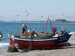 Manualidad Pez La Pesca Milagrosa Manualidades Cristianas Para Ni