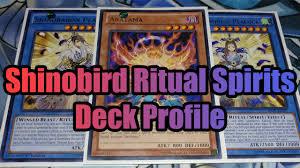 Top Ten Yugioh Decks 2017 by Shinobird Ritual Spirits Yugioh Deck Profile 2017 Raging Tempest