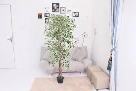 großhandel echte berührung künstlichen olivenbaum blatt haupt dekoration künstlichen pflanzen baum buy künstliche pflanze indoor hause dekorative