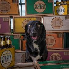 Schlafly Pumpkin Ale Release Date 2017 by Schlafly Using Dogs To Sell Beers St Louis Business Journal