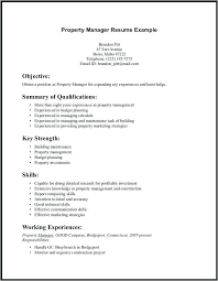 Resume Professional Skills List Example Chronological Format
