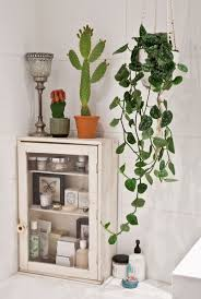 Plants In Bathroom Images by Bathroom Simple Awesome Plants In Bathroom Bathrooms Decor