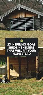 Best 25+ Goat Shed Ideas On Pinterest | Goat Pen, Sheep Pen And ... Outstanding Goat Housing Plans Ideas Best Inspiration Home Building A Barn Part 2 Such And 25 Barn Ideas On Pinterest Pen And Nail Blog April 2015 10x12 With 8x10 Openair Loafing Area I Like This Because It Pasture Dairy Info Your Online Shed Designs Beautiful Garden Package Surprising Gallery Idea Design Stalls For Goats Goat Houses Play Weddings And Other Events At Khimaira Farm
