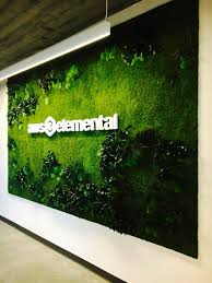 100 Elemental Seattle Preserved Plants Installed In A Vertical Garden At Amazon