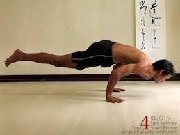 Eka Pada Koundinyasana Yoga Poses Postures Arm Balancing