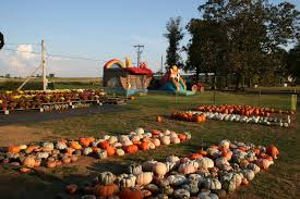 Pumpkin Farms In Georgia by Payne Farm And Produce