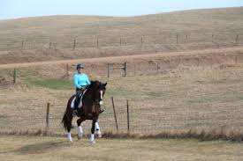 Dressage In Faraway Places - Dressage Today Meadows Equestrian Center On Equinenow 96 Best Vet Books Images Pinterest Horses The Horse And A5f1895b8566a63e9b0f3f2269a3cfaae57a8ajpg Dressage In Faraway Places Today Full Clinic Anchorage Ak Chester Valley Veterinary Hospital Blog Archives Mountain Homes 4 Horse Country 2 2014 Digital By Linda Hazelwood Issuu Nottingham Equine Colic Project 25 Cozy Bed Barns Horserider Western Traing Howto Advice Best Ranch Vacations Of The West American Cowboy