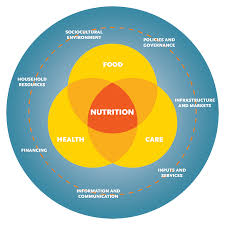 Systems Thinking And Action For Nutrition SPRING