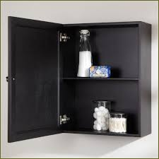 Zenith Medicine Cabinet Replacement Shelves by Plastic Medicine Cabinet Shelves Home Design Ideas