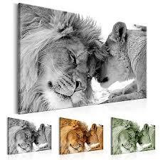 afrika tiere löwe liebe wandbilder bilder vlies leinwand