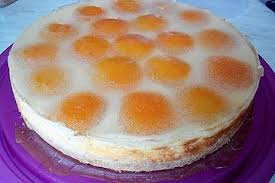 schmand vanillepudding aprikosen torte
