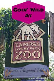 40 Best Tampa's Lowry Park Zoo Images On Pinterest | Zoos, Tampa ... Al Barnes Park Cdc Of Tampa Nicol Winkler Thirstygerman Twitter Dodgers 6 7 And 8 Hitters Excel In Game 2 Mlbcom Events Posts Safe Sound Hillsborough Upcoming List By Day City Sandbag Updates Where You Can Find Them Ahead Hurricane Irma Map The Strange Wonderful Lost Amusement Parks La Find Homes For Sale St Petersburg Smith Board Orange County Sheriffs Office Careers Employment Information
