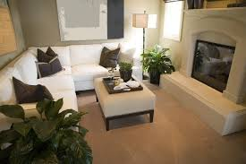 A Small Carpeted Living Room With Raised Hearth Enclosed Fireplace And Several Leafy Houseplants